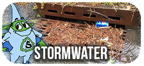 Stormwater Button